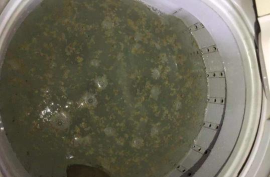 半自动洗衣机不排水的原因  半自动洗衣机不排水解决方法