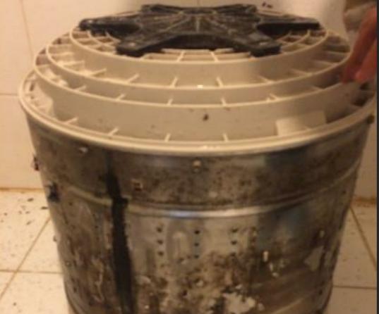 如何彻底清洗洗衣机 洗衣机维护保养的方法